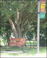 A Wagon Bench in Goliad
